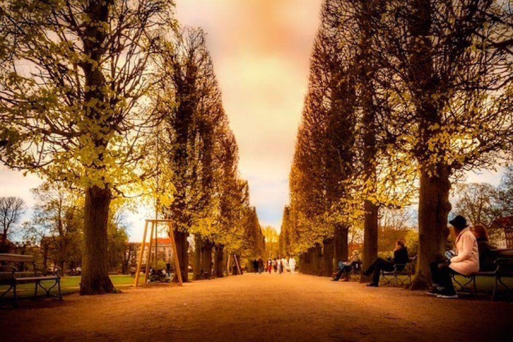 5 Reasons to Visit Copenhagen this Fall
