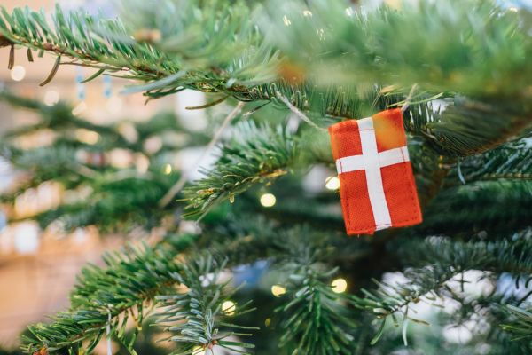Discover Copenhagen at Christmas Time