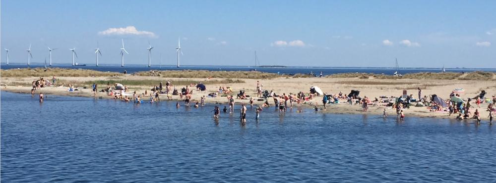 Visiting the Beach in Copenhagen