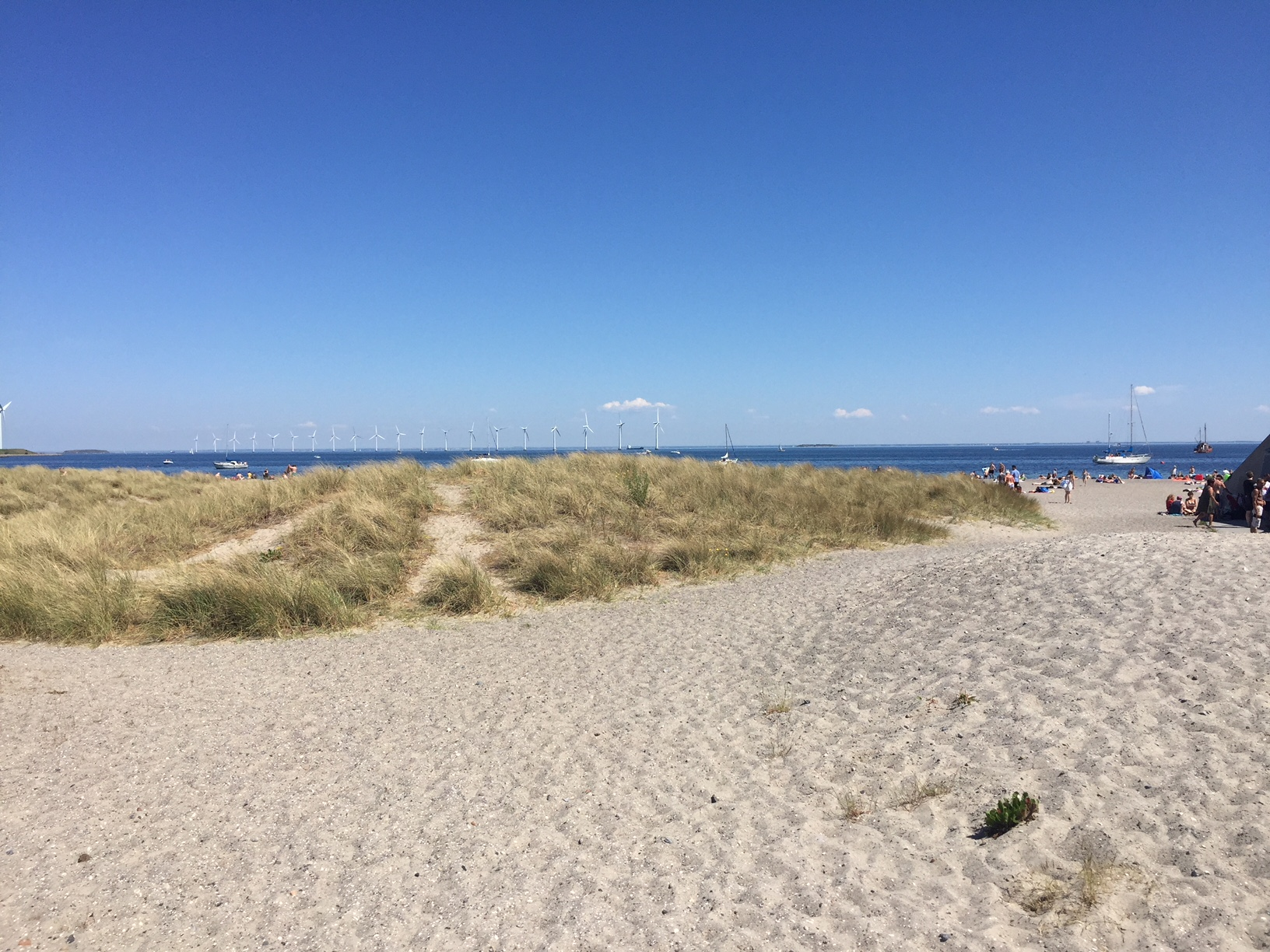 Amager Beach Park visiting the beach in copenhagen | copenhagen downtown hostel