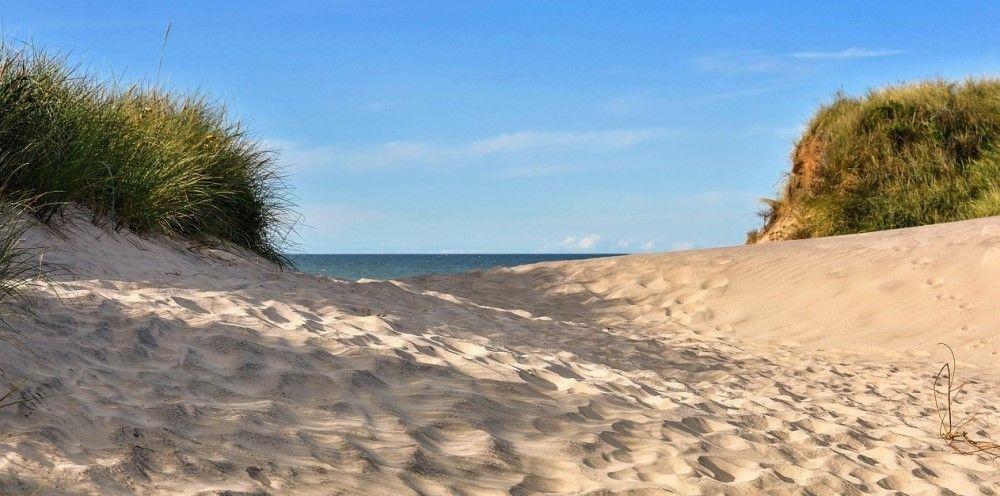Enjoy Copenhagen's Beaches this Summer